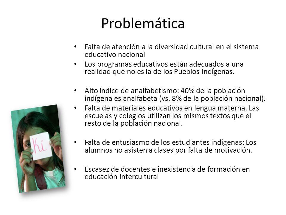 Problemática Falta de atención a la diversidad cultural en el sistema educativo nacional.