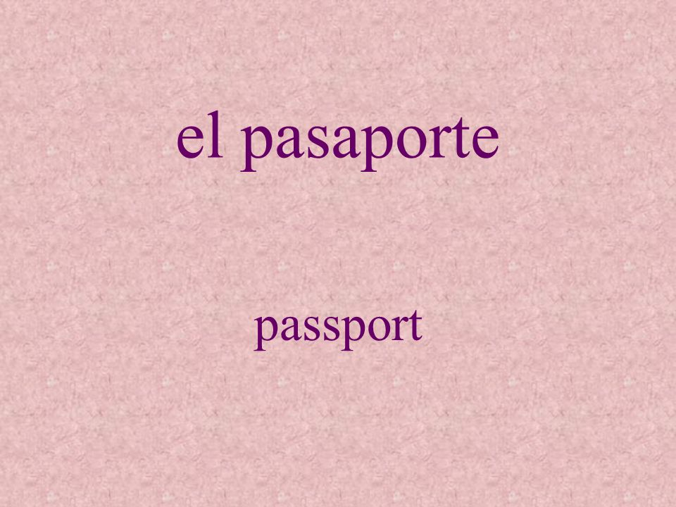 el pasaporte passport