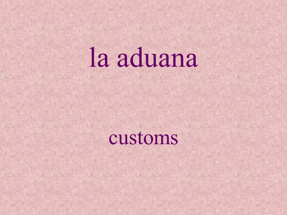 la aduana customs