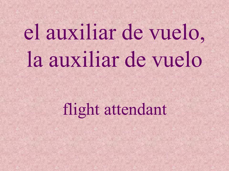 el auxiliar de vuelo, la auxiliar de vuelo