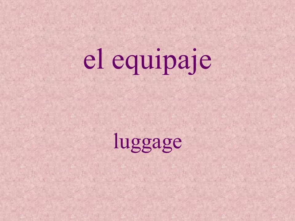 el equipaje luggage