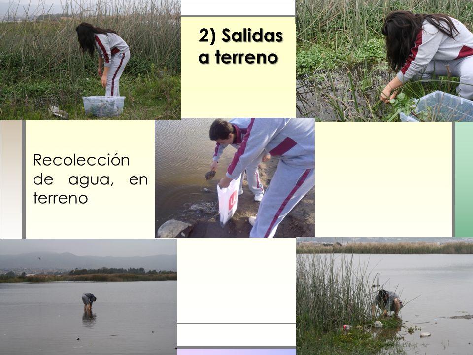 2) Salidas a terreno Recolección de agua, en terreno