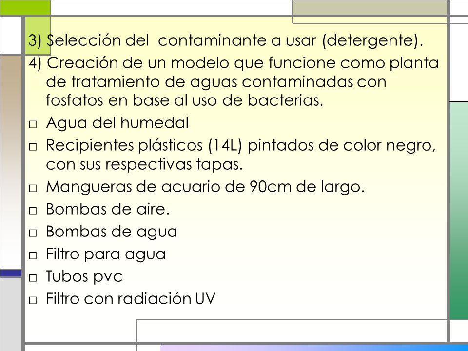 3) Selección del contaminante a usar (detergente).