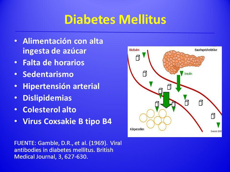 Diabetes Mellitus Alimentación con alta ingesta de azúcar