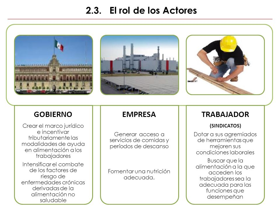 2.3. El rol de los Actores GOBIERNO EMPRESA TRABAJADOR