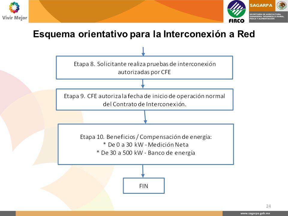 Esquema orientativo para la Interconexión a Red