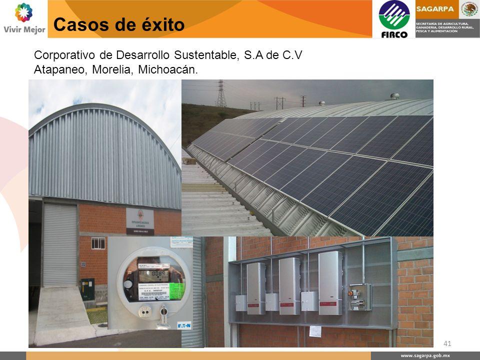 Casos de éxito Corporativo de Desarrollo Sustentable, S.A de C.V Atapaneo, Morelia, Michoacán.