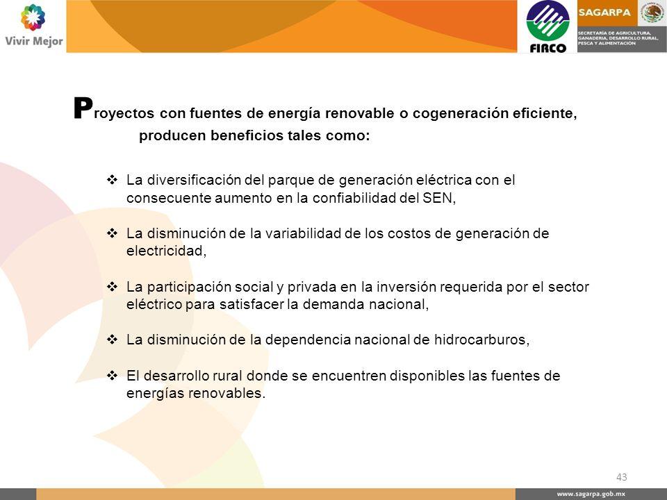 Proyectos con fuentes de energía renovable o cogeneración eficiente,