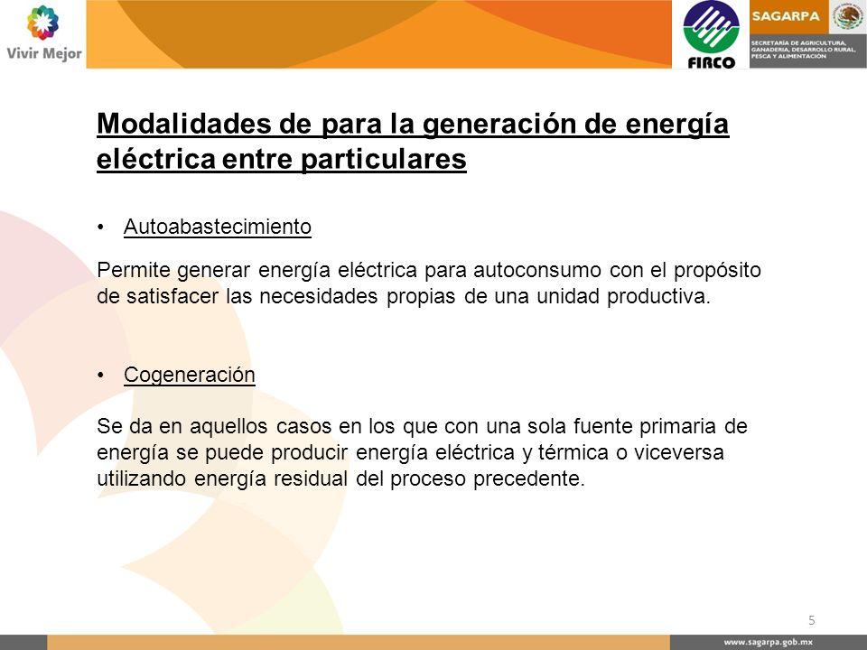 Modalidades de para la generación de energía eléctrica entre particulares