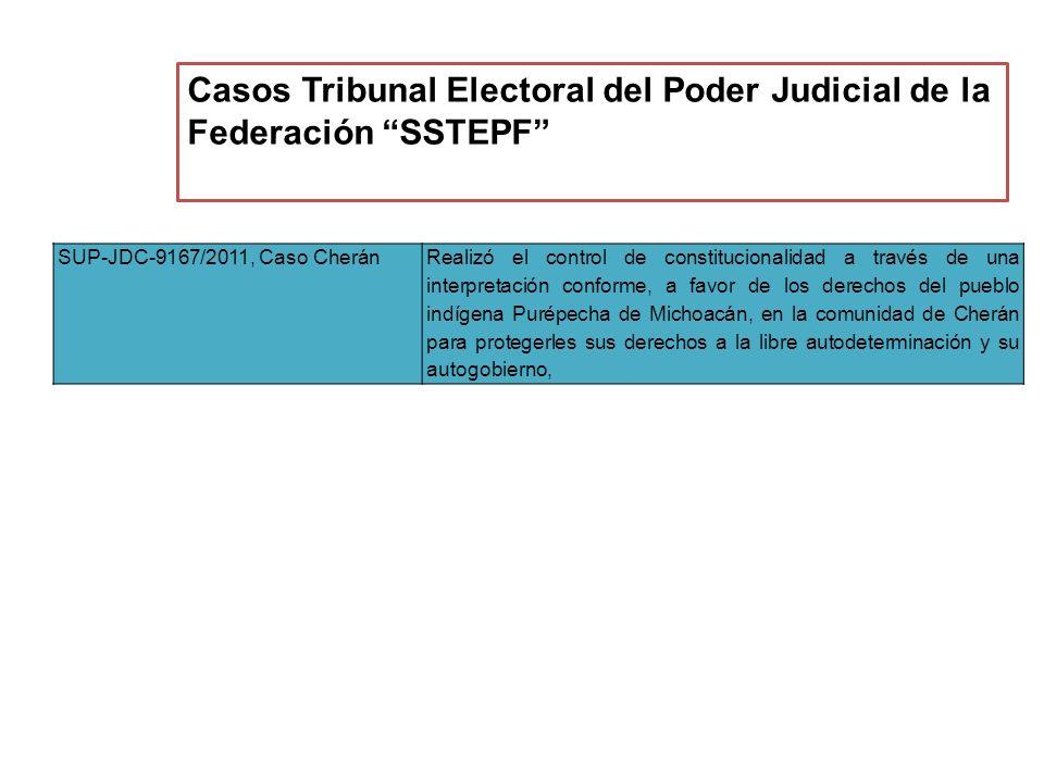 Casos Tribunal Electoral del Poder Judicial de la Federación SSTEPF