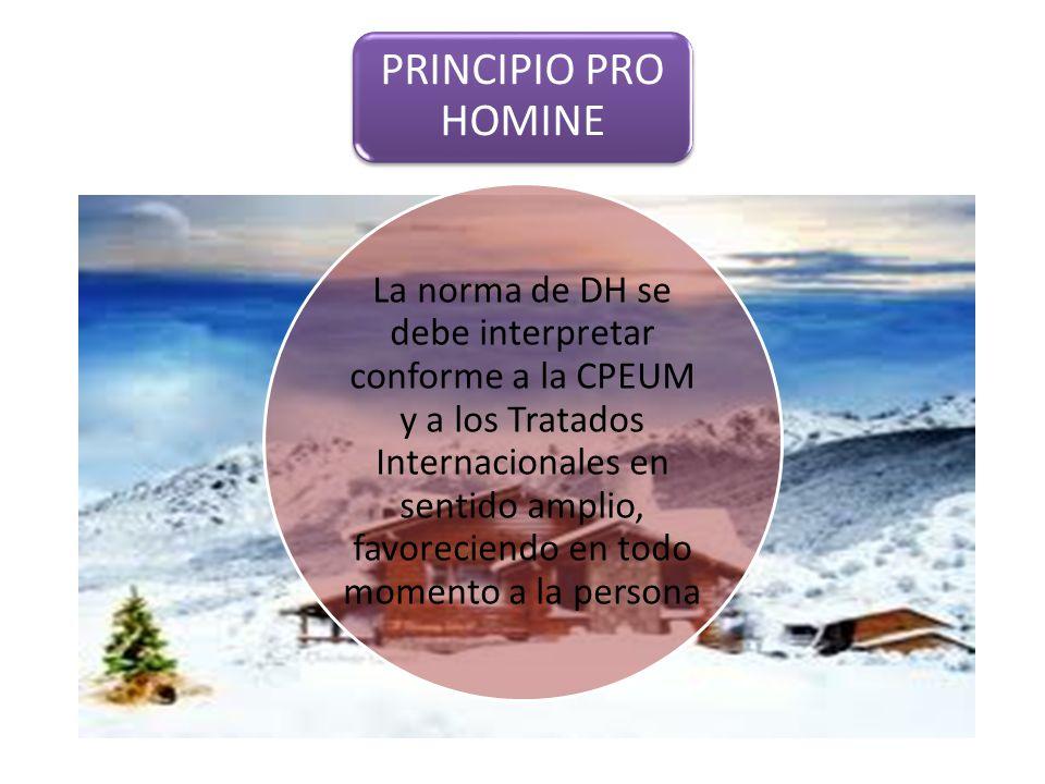 PRINCIPIO PRO HOMINE