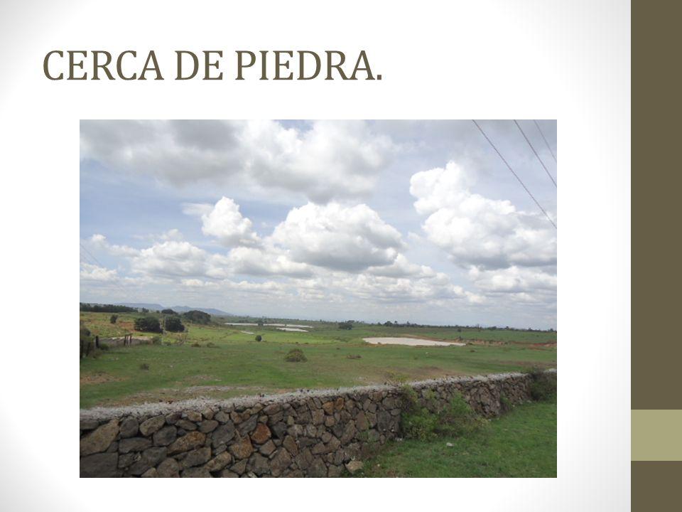 CERCA DE PIEDRA.