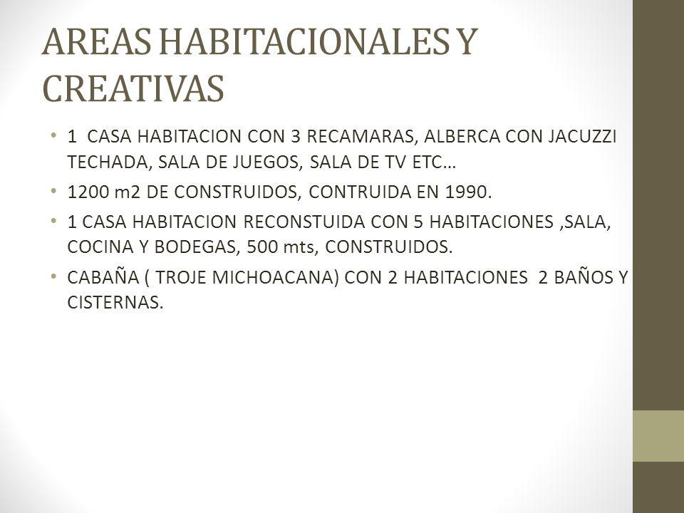 AREAS HABITACIONALES Y CREATIVAS