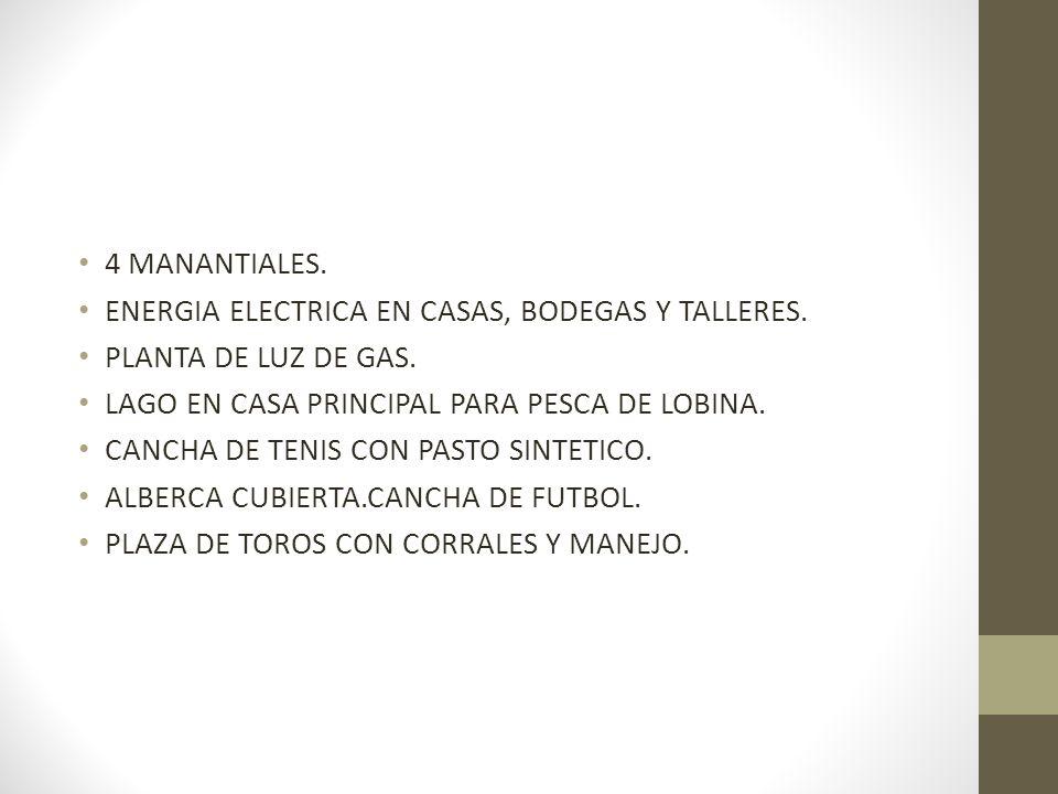 4 MANANTIALES. ENERGIA ELECTRICA EN CASAS, BODEGAS Y TALLERES. PLANTA DE LUZ DE GAS. LAGO EN CASA PRINCIPAL PARA PESCA DE LOBINA.