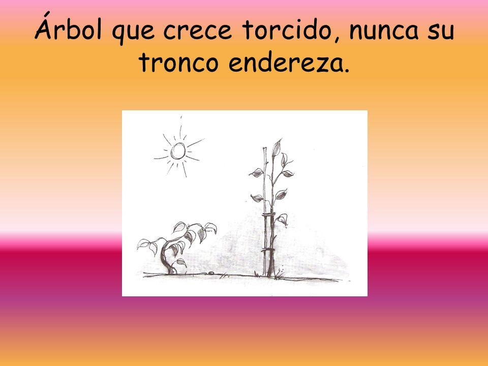 Árbol que crece torcido, nunca su tronco endereza.