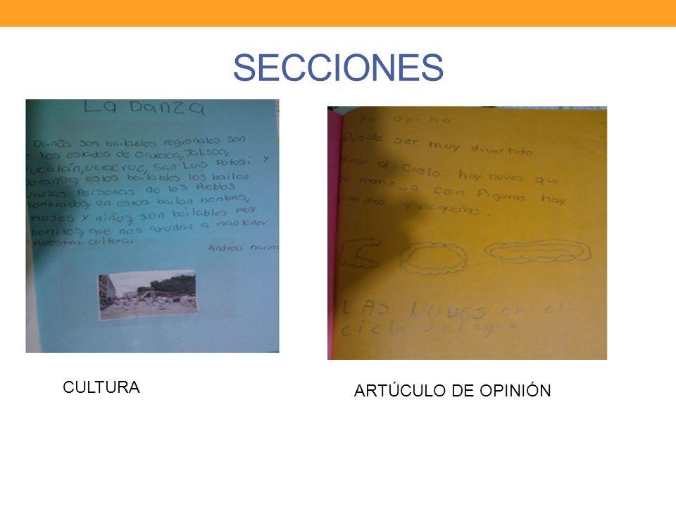 SECCIONES CULTURA ARTÚCULO DE OPINIÓN