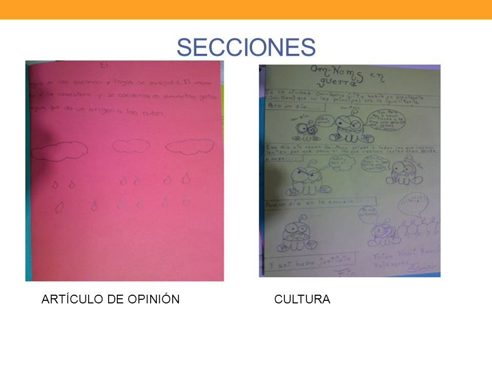 SECCIONES ARTÍCULO DE OPINIÓN CULTURA