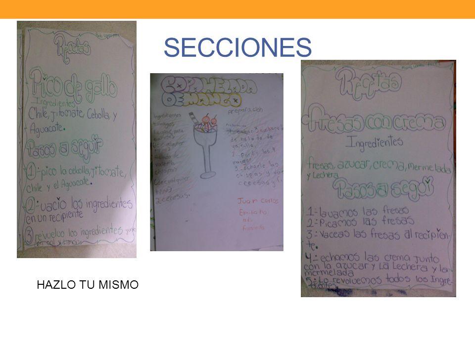 SECCIONES HAZLO TU MISMO