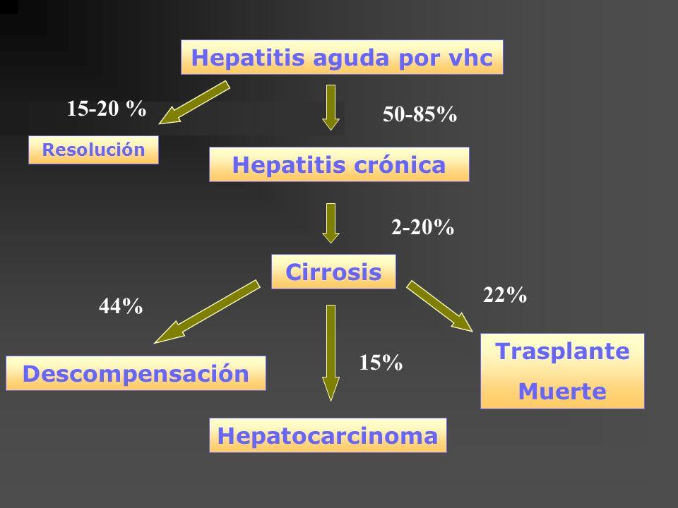 Hepatitis aguda por vhc