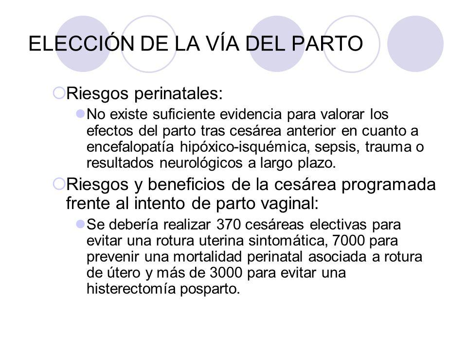 ELECCIÓN DE LA VÍA DEL PARTO