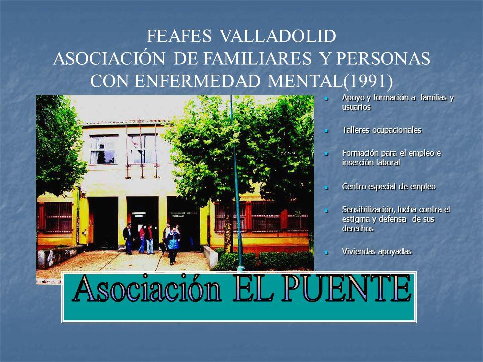 ASOCIACIÓN DE FAMILIARES Y PERSONAS CON ENFERMEDAD MENTAL(1991)