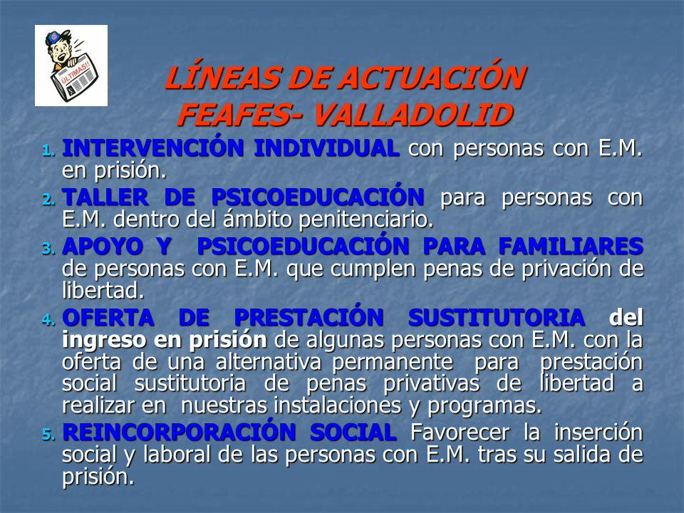LÍNEAS DE ACTUACIÓN FEAFES- VALLADOLID