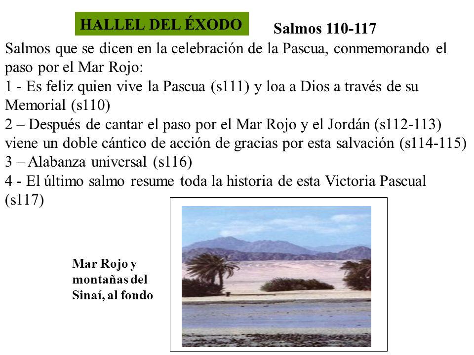 HALLEL DEL ÉXODO Salmos 110-117