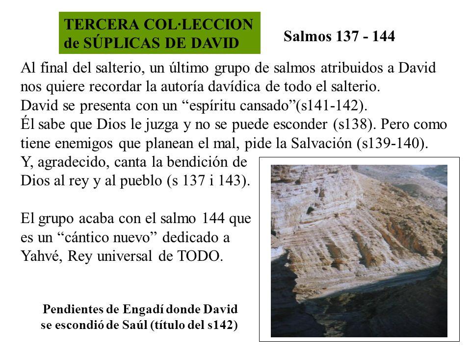 TERCERA COL·LECCION de SÚPLICAS DE DAVID Salmos 137 - 144