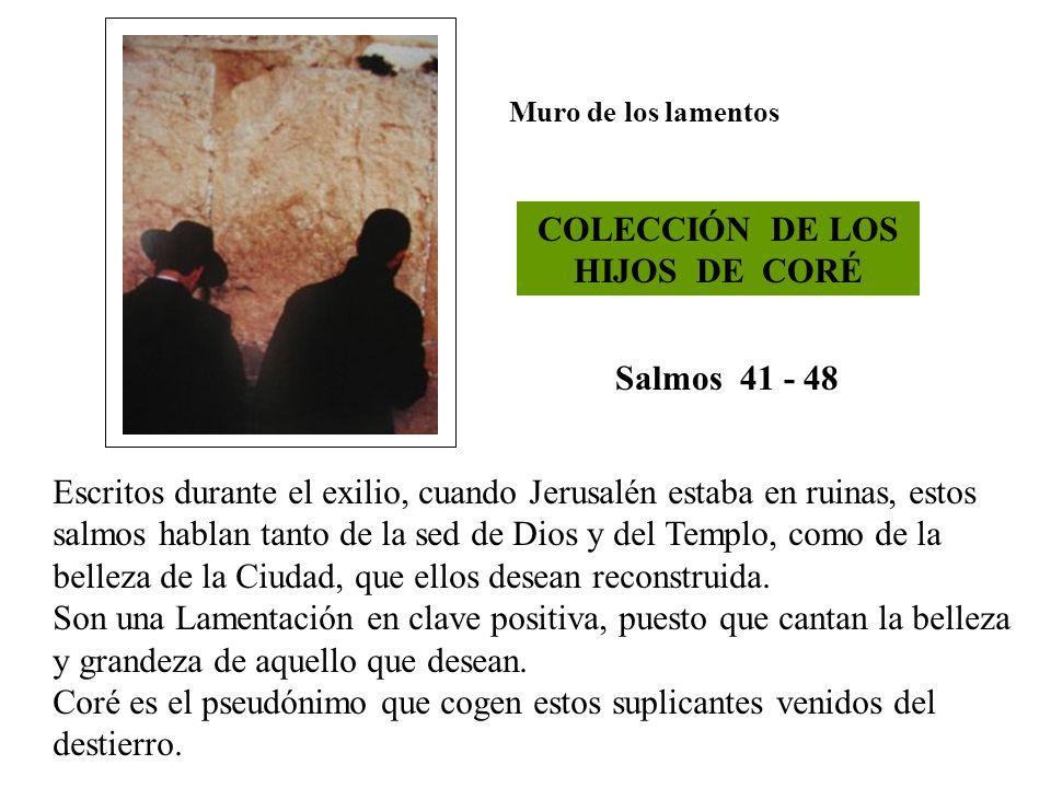 COLECCIÓN DE LOS HIJOS DE CORÉ
