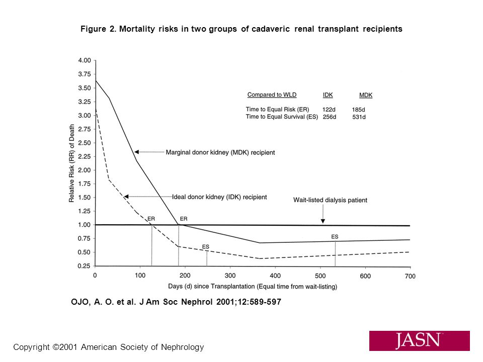 Figure 2. Mortality risks in two groups of cadaveric renal transplant recipients