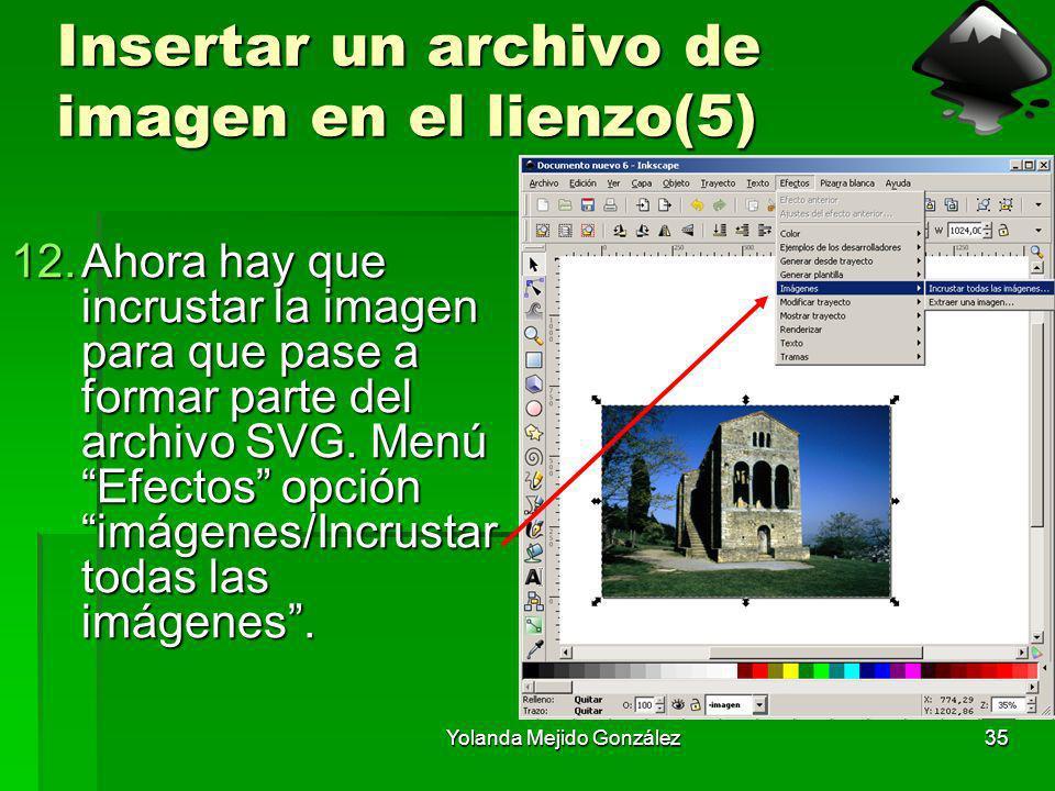 Insertar un archivo de imagen en el lienzo(5)
