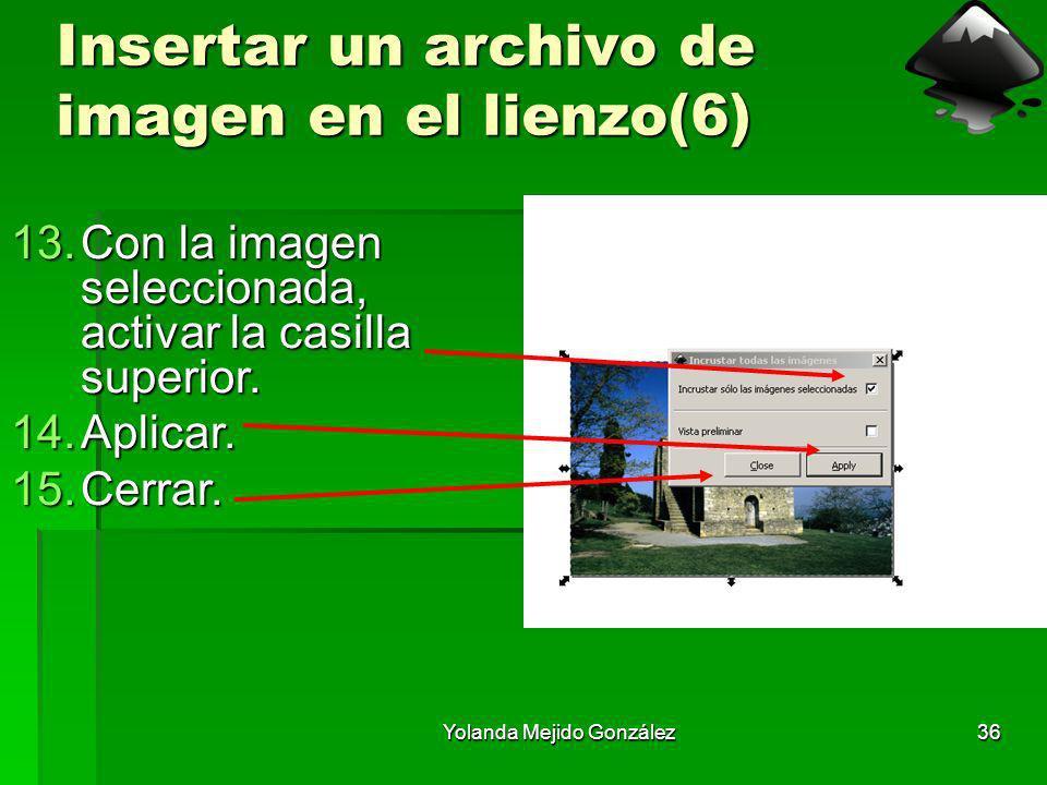 Insertar un archivo de imagen en el lienzo(6)