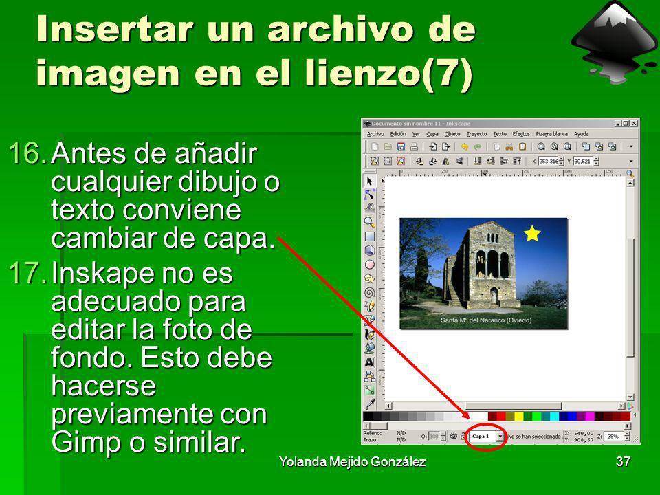 Insertar un archivo de imagen en el lienzo(7)