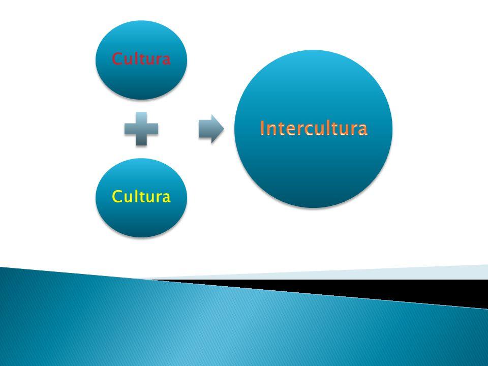 Cultura Intercultura
