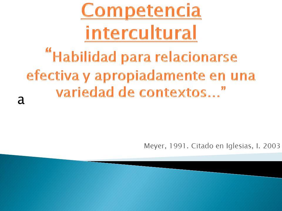 Meyer, 1991. Citado en Iglesias, I. 2003