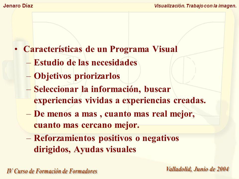 Características de un Programa Visual