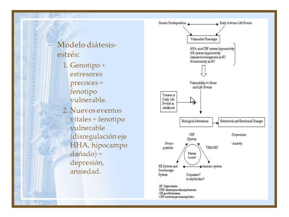 Modelo diátesis-estrés: