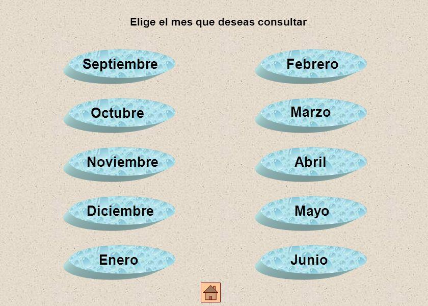 Elige el mes que deseas consultar