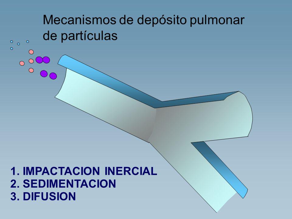 Mecanismos de depósito pulmonar de partículas