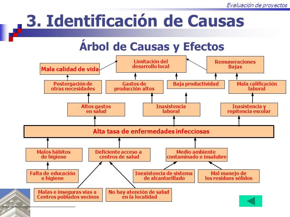 3. Identificación de Causas
