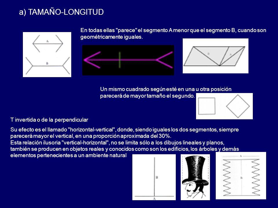 a) TAMAÑO-LONGITUD En todas ellas parece el segmento A menor que el segmento B, cuando son geométricamente iguales.