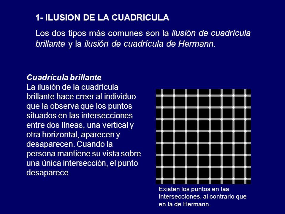1- ILUSION DE LA CUADRICULA