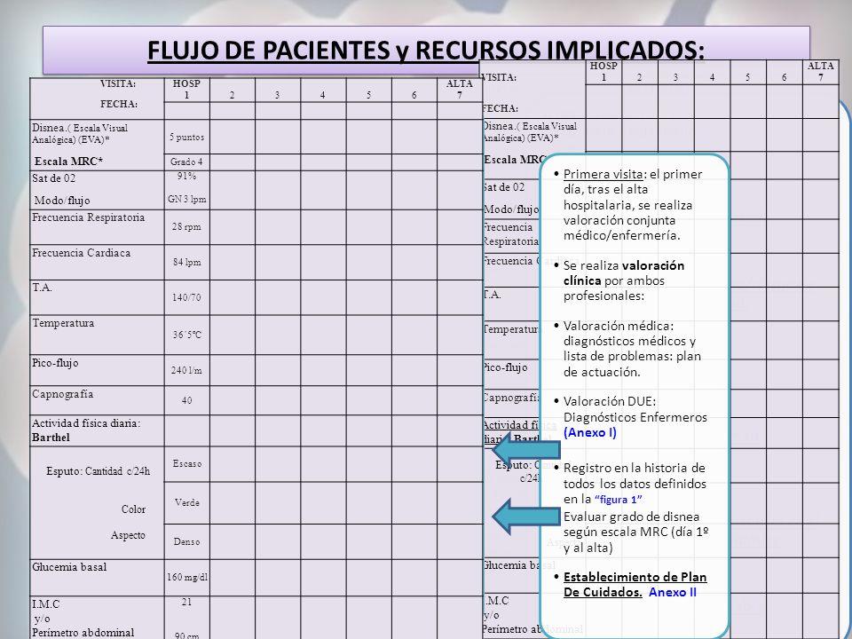 FLUJO DE PACIENTES y RECURSOS IMPLICADOS: