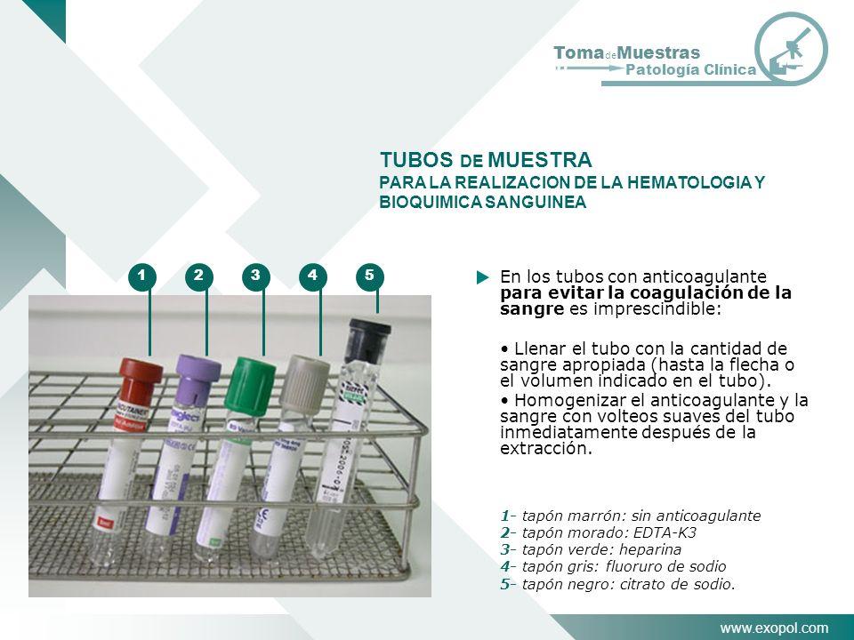 TUBOS DE MUESTRA PARA LA REALIZACION DE LA HEMATOLOGIA Y BIOQUIMICA SANGUINEA. 1. 2. 3. 4. 5.