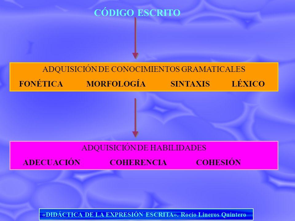 CÓDIGO ESCRITO ADQUISICIÓN DE CONOCIMIENTOS GRAMATICALES