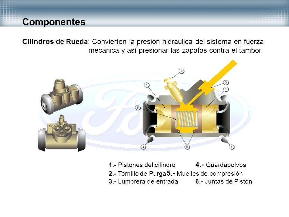 Componentes Cilindros de Rueda: Convierten la presión hidráulica del sistema en fuerza. mecánica y así presionar las zapatas contra el tambor.