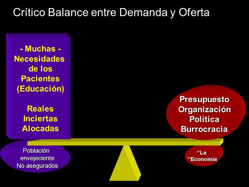 Presupuesto Organización Política Burrocracia