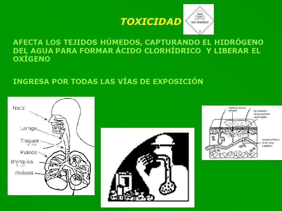 TOXICIDAD AFECTA LOS TEJIDOS HÚMEDOS, CAPTURANDO EL HIDRÓGENO DEL AGUA PARA FORMAR ÁCIDO CLORHÍDRICO Y LIBERAR EL OXÍGENO.