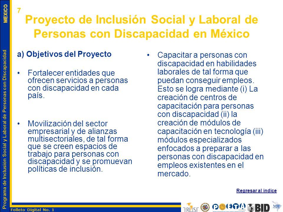 7 Proyecto de Inclusión Social y Laboral de Personas con Discapacidad en México. a) Objetivos del Proyecto.