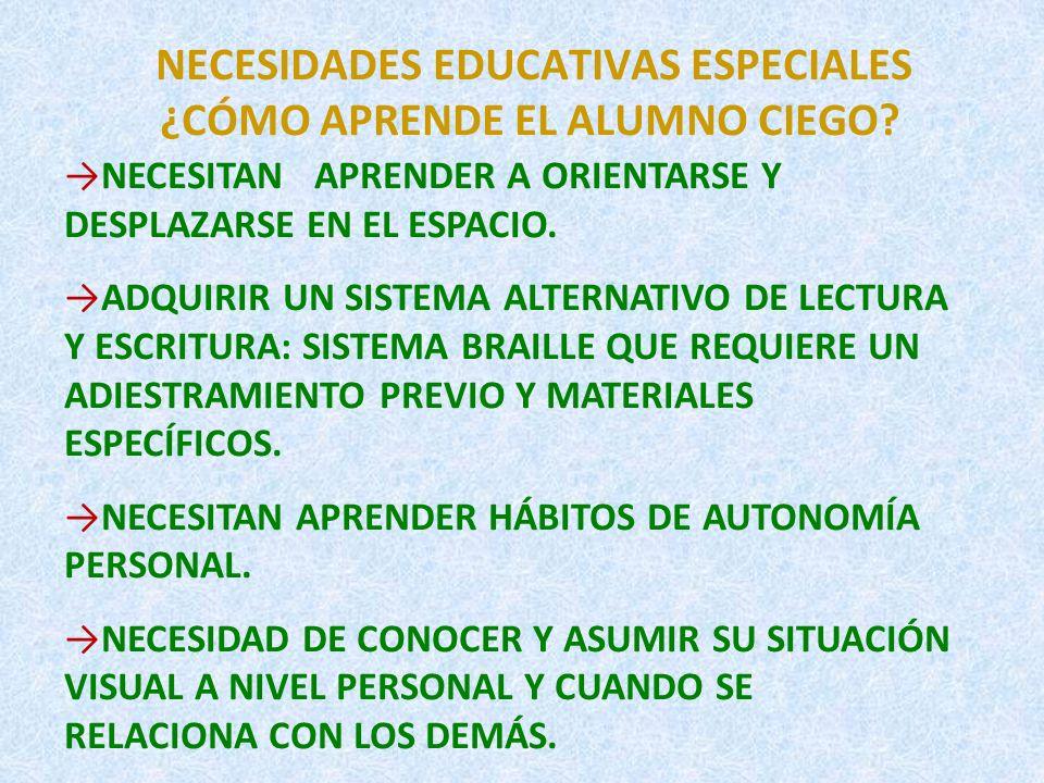 NECESIDADES EDUCATIVAS ESPECIALES ¿CÓMO APRENDE EL ALUMNO CIEGO